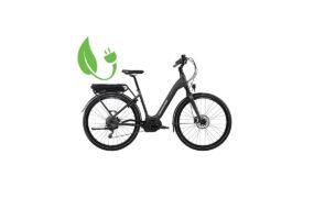 E-bike DELUXE