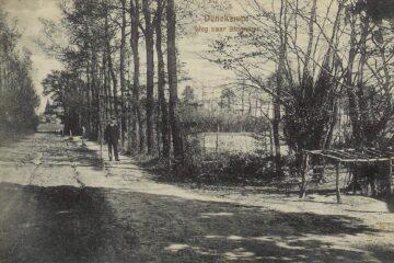 Molendijk, de weg naar het Singraven in Denekamp